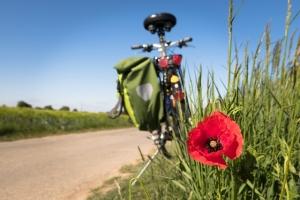 I Benefici della Bicicletta